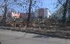 район города Радищева
