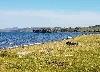 местность залив Хужир-Нугэ