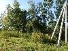 коттеджный поселок Сосновый