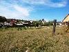 населенный пункт Новогрудинина