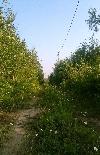 садоводство Отрадное