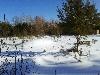 Земельный участок, Введенщина