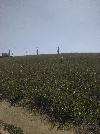 Земельный участок, Южный