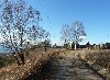 садоводство Баргузин