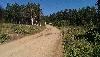 коттеджный поселок Еловый (на 17 км)