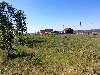 садоводство Кедровое